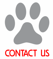 Contact Paw